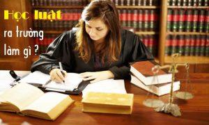 Học luật ra trường làm gì