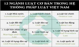 12 ngành luật cơ bản trong hệ thống pháp luật Việt Nam