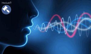 Biện pháp điều tra nhận biết giọng nói trong BLTTHS 2015