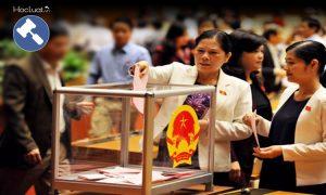 Quyền bầu cử