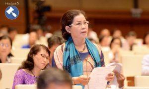 Hiện thực hóa quy định về phụ nữ tham chính ở Việt Nam