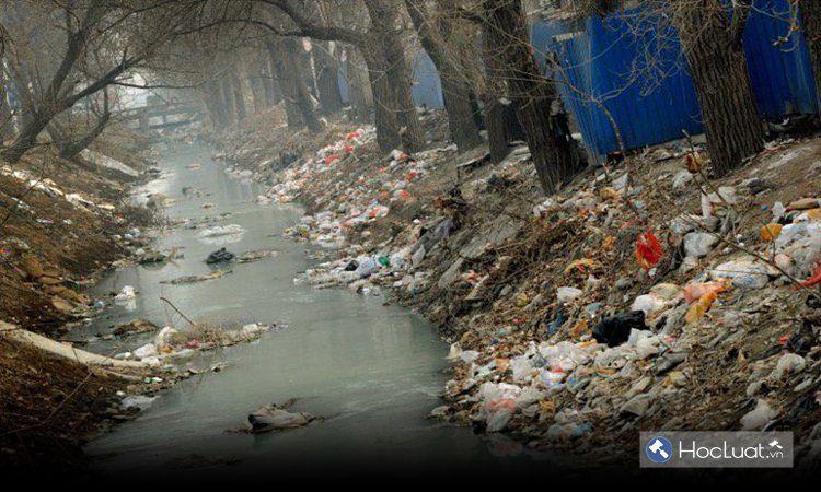 Gây ô nhiễm môi trường