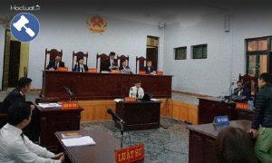 Những điều cần biết về Tòa chuyên trách
